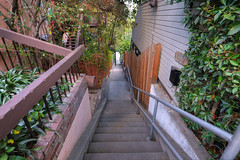 Neighborhood Shortcut (Non Paratus) Tags: stairs la losangeles steps stairway staircase silverlake 1635mmf28lii