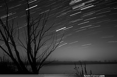 Orion Trailing (kevin-palmer) Tags: november autumn sky blackandwhite lake tree fall water silhouette fog wisconsin night stars dead wolf astrophotography orion astronomy gemini startrails kenoshacounty bongstaterecreationarea