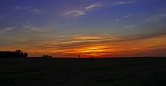 Sonnenuntergang Dresden Bannewitz (Uta Naumann) Tags: sunset sunrise photography twilight nikon colours sonnenuntergang bluesky bluehour blau farbig bunt 2012 d90 sunris nikond90 sonnenuntergangdresden sunrisedresden utanaumann bluehourdresden