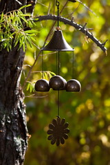 Living a Chimed Life 3 (LongInt57) Tags: trees brown tree green sunshine gardens bells garden grey wind bell gray chimes chime seabuckthorn seabuckthorns