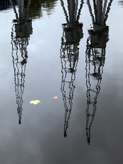 Three cranes (*Firefox) Tags: reflection london leaves canon powershot cranes s100 canonpowershots100