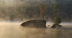 Misty morning (1) (krissen) Tags: lighting morning light mist nature water beautiful forest sunrise landscape early sweden natur hennickehammar