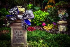 Old Fly Bait, He Croaked (hbmike2000) Tags: cemetery graveyard stone nikon disneyland disney frog bow gravestone d200 hdr hauntedmansion neworleanssquare hauntedmansionholiday hss disneylandresort passthegravy sliderssunday hbmike2000