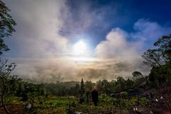 (digital_trance) Tags: sunset cloud sun moon mist 20d nature fog night sunrise canon landscape photography moss dragonfly taiwan bee     moutain   moonshine  sunmoonlake     nantou           70d   40d   canon40d     5dmarkii 5d2 5dii cano