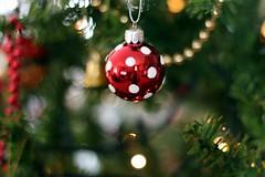 Spotty (Belinda Lee. W) Tags: christmas xmas holiday tree festive season december bokeh decoration dec ornament decor 2012