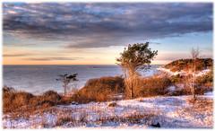 Spornes, Tromy (Svein Bjerkholt) Tags: sea snow canon landscape vinter hdr hav beauiful arendal landskap sj supershot thegalaxy tromy spornes stunningskies bestcapturesaoi flickrstruereflection3 rememberthatmomentlevel1 rememberthatmomentlevel2 me2youphotographylevel1 bestevergoldenartists