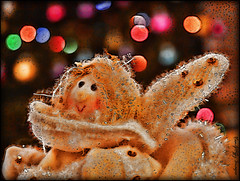 'Little Angel!' (HMM - Decoration) (VanGoffy) Tags: christmas color colour macro cute angel bokeh decoration panasonic monday hmm goffy vangoffy