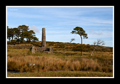 Powder Mills (pixel bender) (Frog n fries) Tags: chimney tree landscape ruin dartmoor powdermills pixelbender drunktree