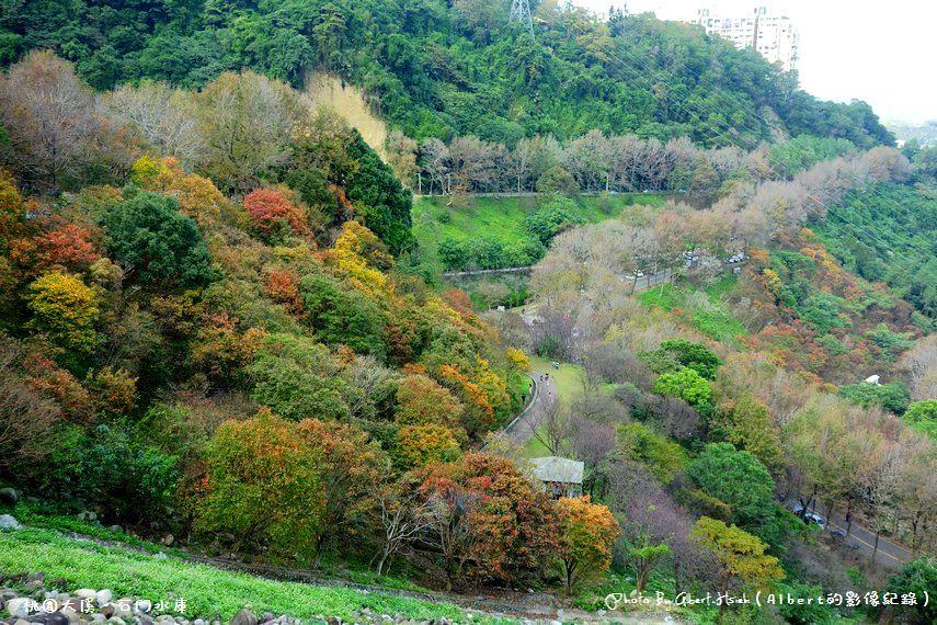【楓葉】桃園大溪.石門水庫(北台灣低海拔最佳的賞楓景點)
