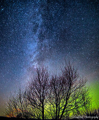 Diamonds in the sky.. (Gulli Vals) Tags: park longexposure blue winter sky orange tree green night stars island iceland purple national ingvellir northernlights auroraborealis tr 14mm norurljs samyang stjrnur