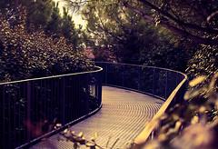 Nowhere-02 (KoNwALsKy) Tags: world bridge light ex horizontal french eos lyrics war place humanity f14 nowhere jardin sigma places right 7d pont left parc graden symetric futur utopie 30mm potic utopic destinity hsmprojet