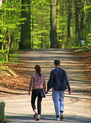 Lovers in the forest (Stig V.) Tags: young sweetheart spring forest lovers green love