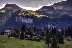 Wanderung Klewenalp 3, Schweiz