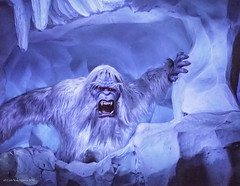 Disneyland 2016-The Abominable Snowman of Matterhorn Mountain 04 (JUNEAU BISCUITS) Tags: disney disneyland disneyparks disneyresort fireengine mainstreet mainstreetusa tangled rapunzel flynnrider meetandgreet abominablesnowman matterhorn eticket windowdisplay mainstreetwindowdisplay aladdin peterpan nikond810 nikon vacation resort themepark amusement