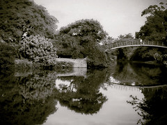 Le Pont (Serlunar (tks for 4.8 million views)) Tags: reflexion serlunar ponte ibirapuera