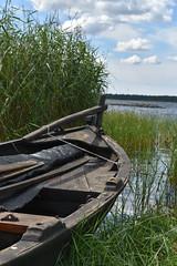 DSC_0222 (Lotsig) Tags: gotland  island boat bt eka rowingboat roddbt sommar summer fr vatten water stersjn hav sea strand beach