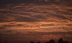 Gurgaon sky at dawn (indutridibesh) Tags: dawn gorgeous balcony gurgaon sky skyscape sunrise outdoor