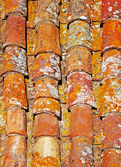 Fragment of Colorful old tile roof (PhoenixRoofing164) Tags: wallpaper europe house rough old vintage architecture abstract building background brown closeup natural orange pattern texture brick home spain stone protection colorful exterior construction cover detail roofing frame structure attic clay material row aged south italian traditional residential estate ceramic repeat shabby tiling roof tile roofer