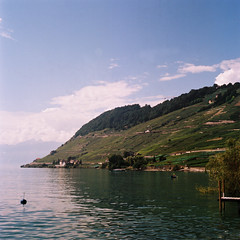 Lavaux. (Alejandro Melero Carrillo) Tags: film 120mm switzerland suisse swiss suiza laclman lake summer yashicamat124g yashica clouds nubes sky mountains verano t viedo vineyards shore orilla dock hill colina dole