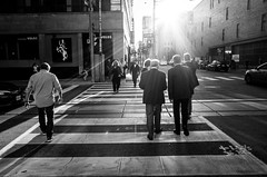 Untitled (Howard Yang Photography) Tags: lensflare light crosswalk crossing streetphotography bnw bw blackandwhite toronto ricohgr