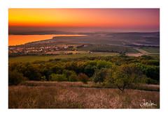 . (Ja) Tags: sunrise sun light sunlight landscape czech moravia trees skies sky olympus em5ii