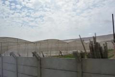 fog-catching diffusers (cam17) Tags: arica chile aricachile fogcatcher garuacatcher irrigationsystem fogcatchingnet atacamadesert atacama diffusers sunscreens