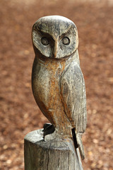 "Wooden ""WOL"" (Treflyn) Tags: owl wooden storybook playground national trust cliveden"