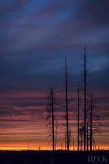 Desolate Sunset (Russell Eck) Tags: outdoor dusk sky sunset color nikon clouds burnt forest meadows north rim grand canyon nature landscape long exposure travel arizona russell eck kaibab national