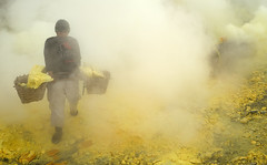 java - ijen (peo pea) Tags: ijen indonesia hard work yellow reportage portrait ritratto portraits ritratti hell paradise inferno paradiso cratere crater