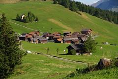 IMGP5451 (Alvier) Tags: schweiz graubünden albulatal surses oberhalbstein ziteil mutten obermutten salouf