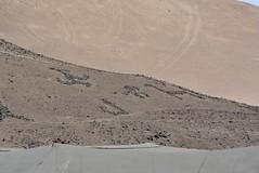 geoglyphs and cart tracks (cam17) Tags: arica chile aricachile petroglyphs stonefigures atacamadesert atacama geoglyph carttracks