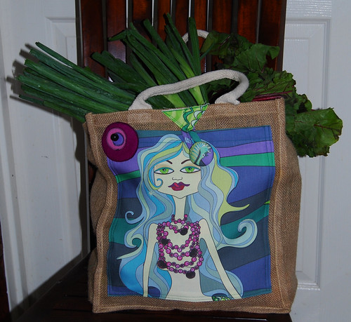 a transformed supermarket bag...