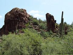 Rocky Terrain (Shotz by TCreates) Tags: arizona cactus usa southwest west green nature unitedstates olympus saguaro sonorandesert rockformations 2012 apachetrail