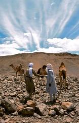 Tibesti, Chad (michael_jeddah) Tags: chad camel tubu tibesti