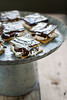 charred oak marshmallow indoor s'mores (Beth Kirby | {local milk}) Tags: oak support sandy hurricane fluff homemade marshmallow smores chocolatedipped redcross donate