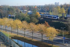 Herfst langs het spoor (Marco Moerland) Tags: railroad autumn tree train automne tren rotterdam ns herbst herfst eisenbahn railway alexander bahn arbre baum slt trein spoorwegen spoorweg sprinter nederlandse chemindefer alexanderpolder bomm