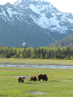 Alaska Kenai River Fishing and Saltwater 41
