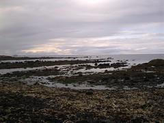 East Beach, Dunbar 1 (tumpshy) Tags: seaweed beach clouds rocks calm northsea lowtide dunbar bassrock isleofmay eastbeach calmday dunbarbeach