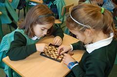 Chess (18)