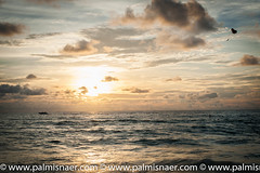 Parachuting (Palmi Snaer) Tags: ocean travel sunset sea water clouds thailand island boat asia speedboat gliding phuket th 2012 parachute karonbeach mueangphuket