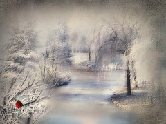 The snow rests upon the land (maom_1 (Off, most of the time)) Tags: collage digital creativephotocafe