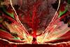 Re# (quornflake) Tags: longexposure light lightpainting man night fire weird long exposure fireworks surrey sparklers fisheye lighttrails trippy sparks farnham littlepond digitallightwand