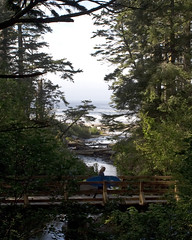 Oswald Park - NW Surfer Girl (DCWright-Whidbey) Tags: surfer beaches oregoncoast oswaldstatepark