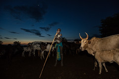 child of the Mursi tribe awakens with the cows (anthony pappone photography) Tags: africa travel portrait baby barn digital canon pose children photography photo foto child cows faces image expression retrato african picture culture portraiture afrika enfants fotografia ethiopia ritratto mursi reportage photograher afrique bambino eastafrica mucche phototravel etiopia etnic 非洲 etnico ethiopie etiope etnia アフリカ etnica afryka エチオピア childrentravel etiopija portraitsofchildren mursitribe 아프리카 etiopien etiópia 埃塞俄比亞 africantribe африка etiopi أفريقيا эфиопия 에티오피아 أثيوبيا eos5dmarkii 部族 mursy अफ्रीका childrenbestphotos