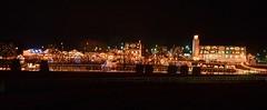 Koziar's Christmas Village (blhunter09) Tags: elementsorganizer