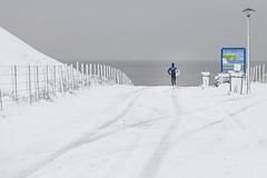 Winter Surfing (siebe ) Tags: winter sea snow cold holland beach dutch sport strand landscape surf sneeuw nederland thenetherlands zee surfing landschap noordwijk kou langevelderslag trouwfoto