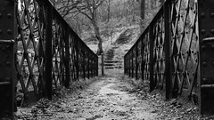 Black Bridge (_DanBaird) Tags: road park new wood uk trip bridge blue trees winter england sky blackandwhite bw white black tree nature leaves rock metal forest canon photography eos photo interestingness europe day open view shot autum path steps ground soil greenery daytime popular twigs edit apature picoftheday durt 600d outstandingshot canon600d eos600d