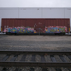 NORMEL  HIVE (TRUE 2 DEATH) Tags: railroad art train graffiti graf ant trains railcar boxcar 28 msg railways hive railfan freight tsc freighttrain rollingstock fls benching normel freighttraingraffiti allnation