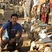 camel market - goats for Yemen 3