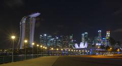 Metropolis #1 (Purple_man) Tags: city bridge skyline museum night marina bay singapore cityscape photos stock sands cp cheah purpleman artscience